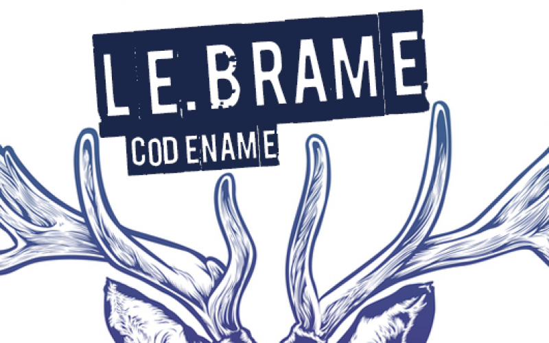 HSBOX Project : Le Brame amplifier